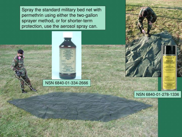 Spray the standard military bed net with permethrin using either the two-gallon sprayer method, or for shorter-term protection, use the aerosol spray can.