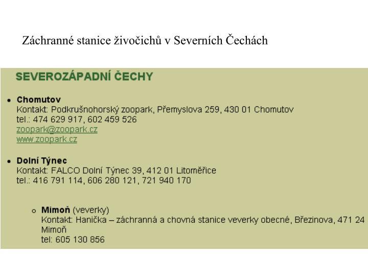 Záchranné stanice živočichů v Severních Čechách