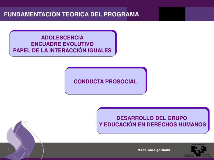 FUNDAMENTACIÓN TEÓRICA DEL PROGRAMA