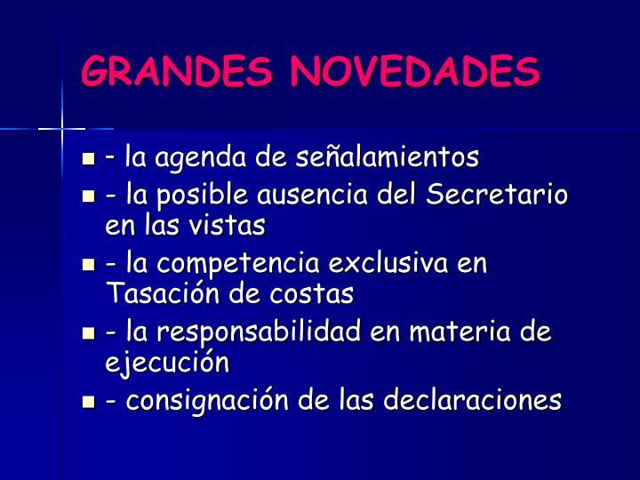GRANDES NOVEDADES