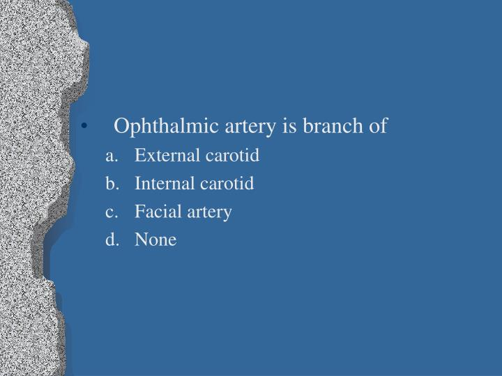 Ophthalmic artery is branch of