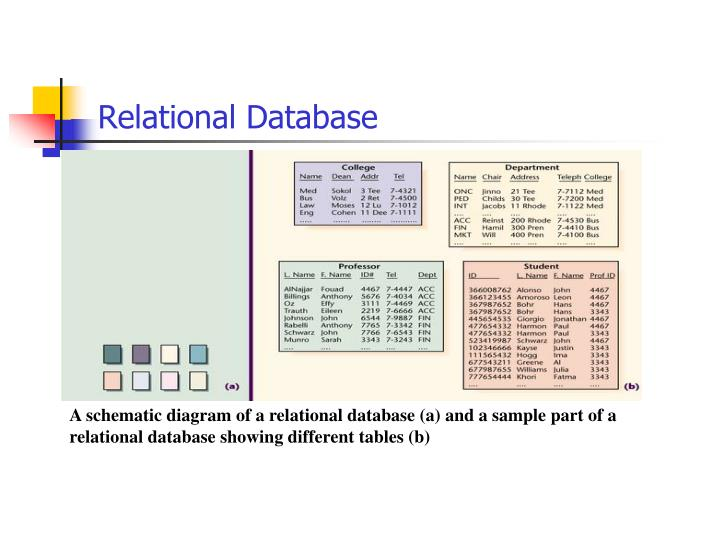 A schematic diagram of a relational database (a) and a sample part of a relational database showing different tables (b)