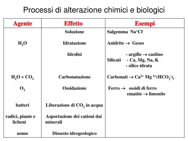Processi di alterazione chimici e biologici