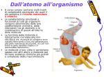 dall atomo all organismo