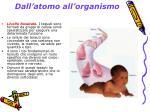 dall atomo all organismo3