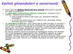 epiteli ghiandolari o secernenti1