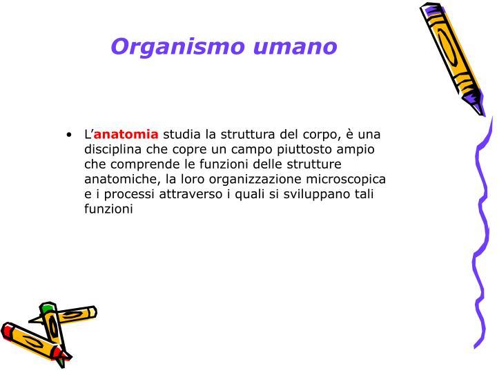 Organismo umano