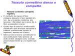 tessuto connettivo denso o compatto1