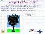 seeing clues around us