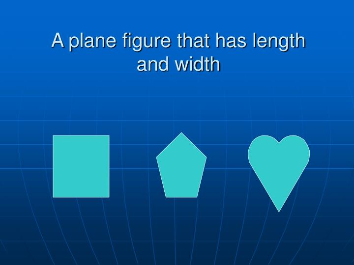 A plane figure that has length and width