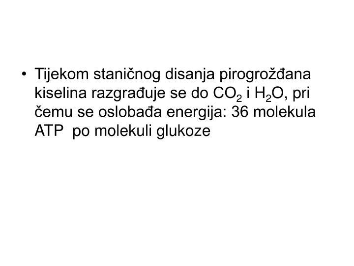 Tijekom staničnog disanja pirogrožđana kiselina razgrađuje se do CO