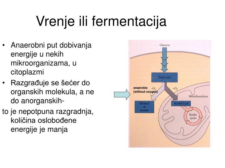 Vrenje ili fermentacija
