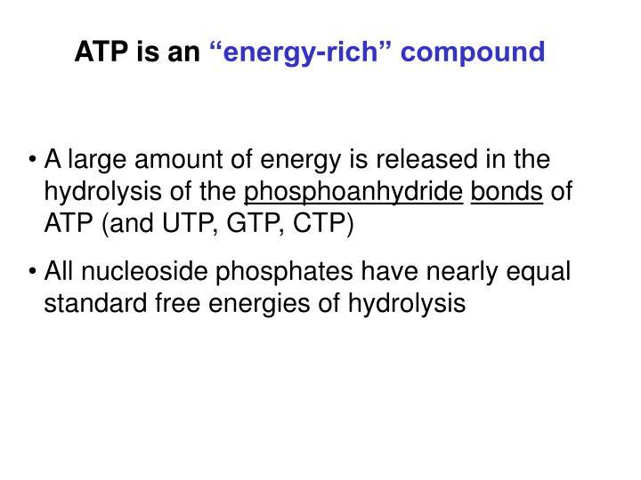ATP is an
