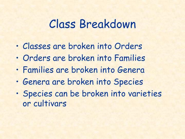 Class Breakdown