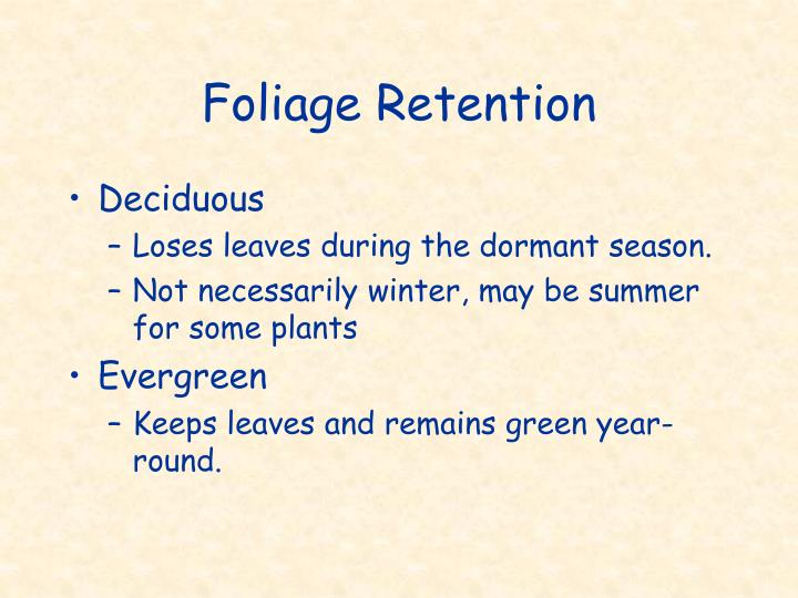 Foliage Retention