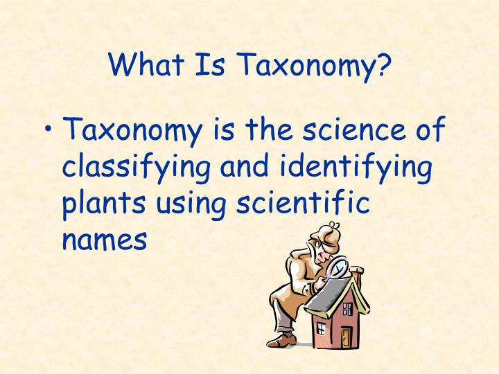 What Is Taxonomy?