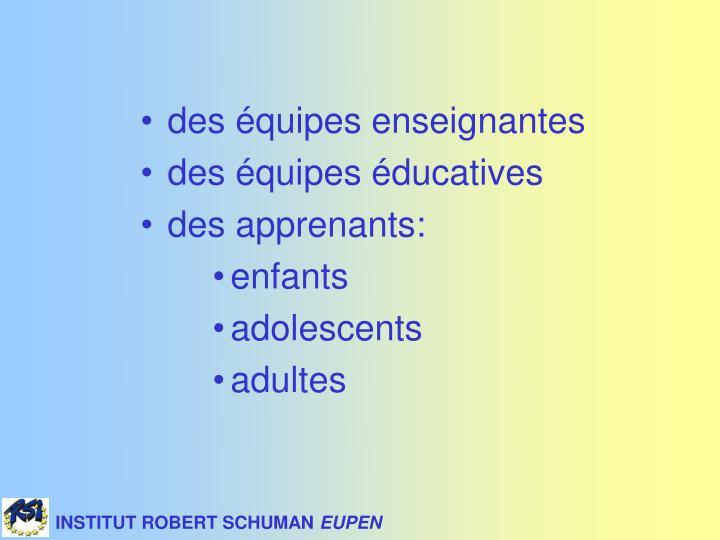 INSTITUT ROBERT SCHUMAN