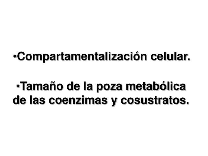 Compartamentalización celular.