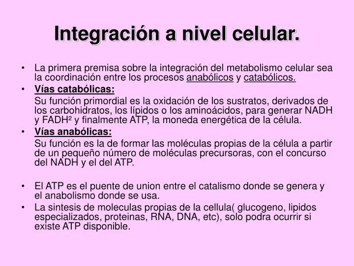 Integración a nivel celular.