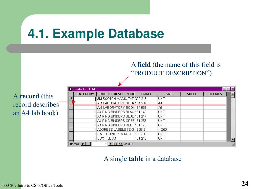 4.1. Example Database