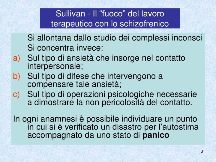 """Sullivan - Il """"fuoco"""" del lavoro terapeutico con lo schizofrenico"""
