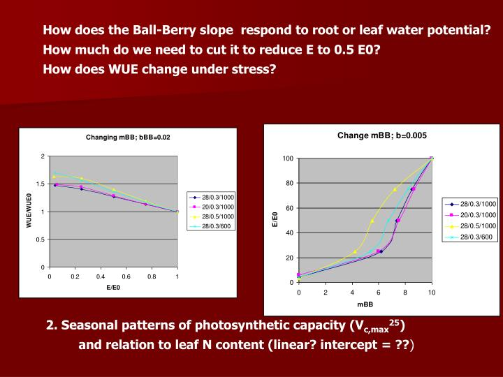 How does the Ball-Berry slope  respond to root or leaf water potential?