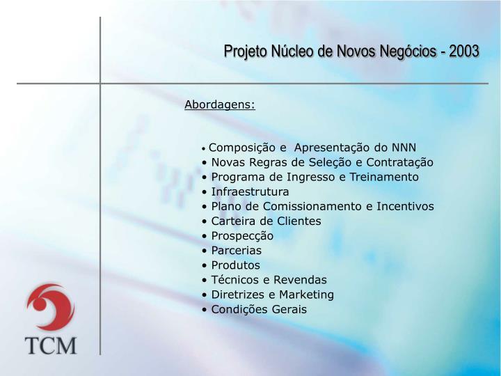Projeto Núcleo de Novos Negócios - 2003