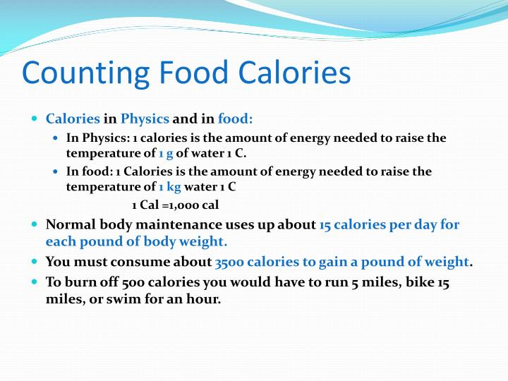 Counting Food Calories