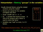 interpretation naming groups in the variables