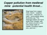 copper pollution from medieval mine potential health threat