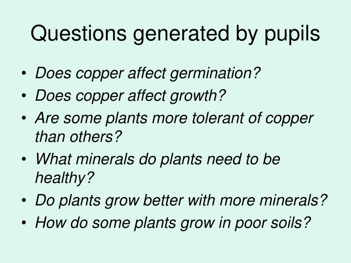 Questions generated by pupils