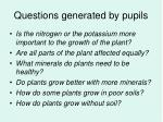 questions generated by pupils1