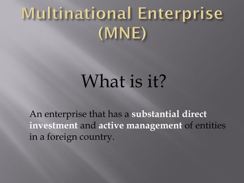 Multinational Enterprise (MNE)
