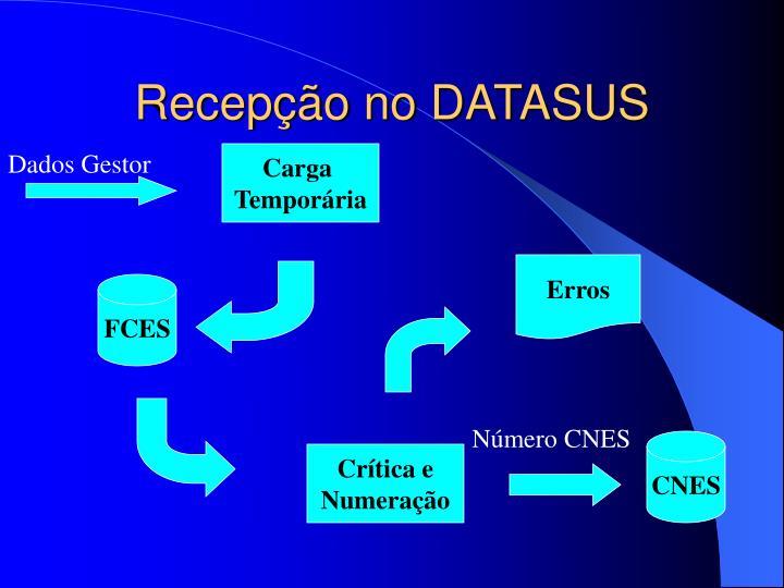 Recepção no DATASUS