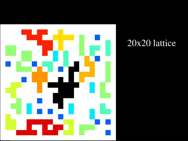 20x20 lattice