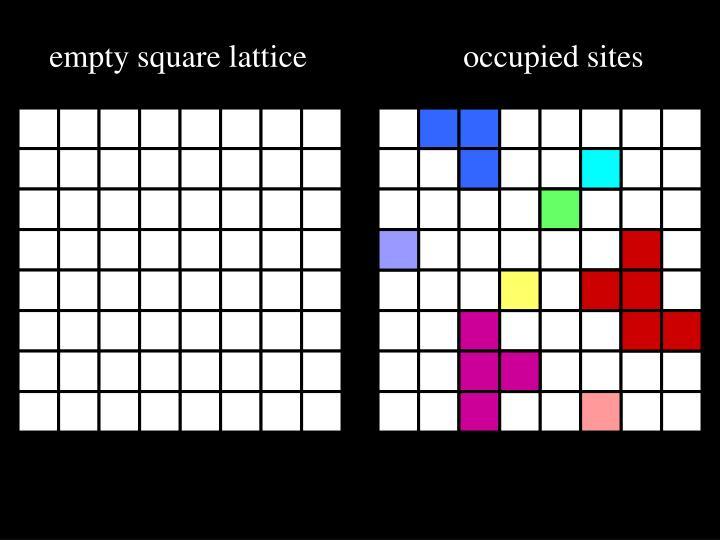 empty square lattice