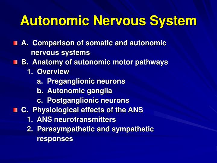 PPT - Autonomic Nervous System PowerPoint Presentation - ID:870509