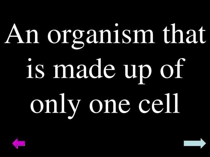 An organism that is made up of only one cell