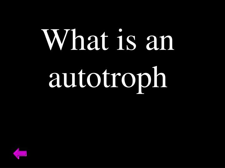 What is an autotroph