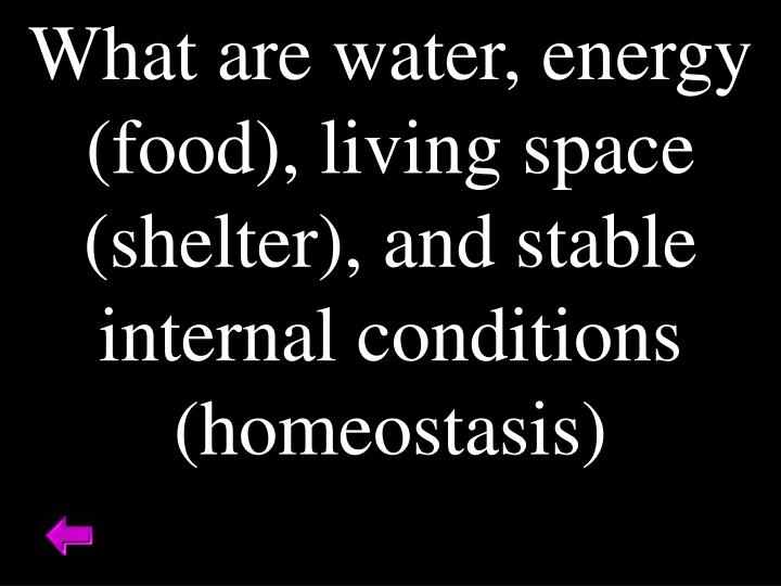 What are water, energy (food), living space (shelter), and stable internal conditions (homeostasis)