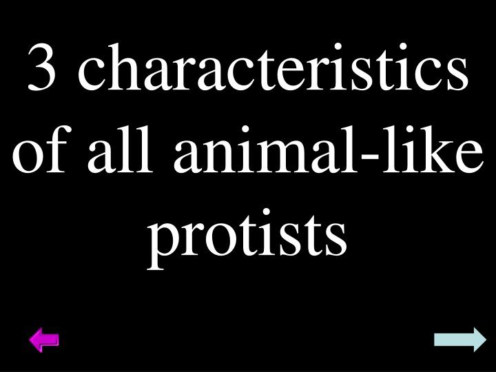 3 characteristics of all animal-like protists