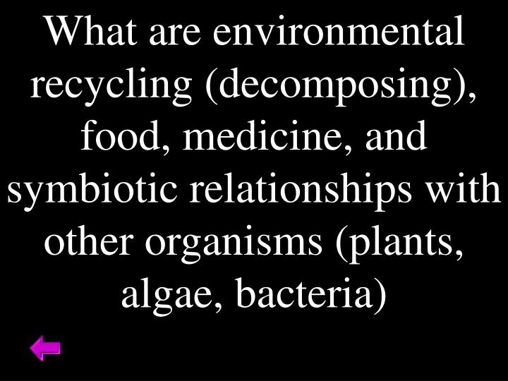 What are environmental recycling (decomposing), food, medicine, and symbiotic relationships with other organisms (plants, algae, bacteria)