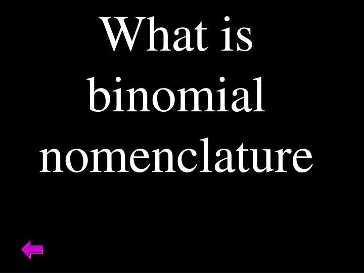 What is binomial nomenclature