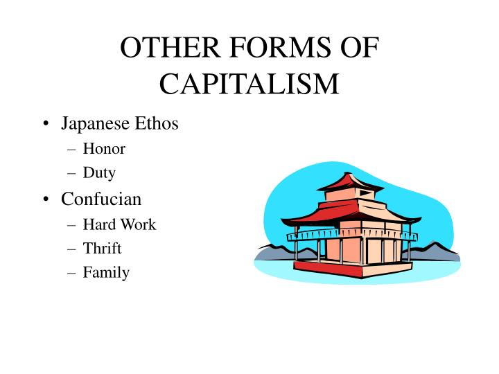 OTHER FORMS OF CAPITALISM