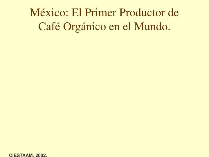 México: El Primer Productor de Café Orgánico en el Mundo.