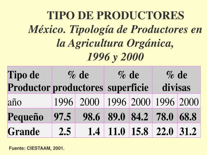 TIPO DE PRODUCTORES