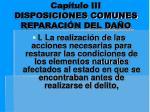 cap tulo iii disposiciones comunes reparaci n del da o3