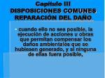 cap tulo iii disposiciones comunes reparaci n del da o4