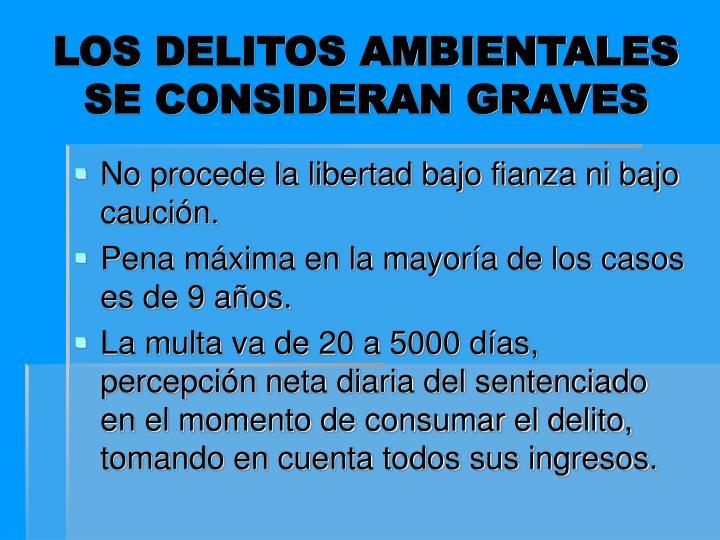 LOS DELITOS AMBIENTALES SE CONSIDERAN GRAVES