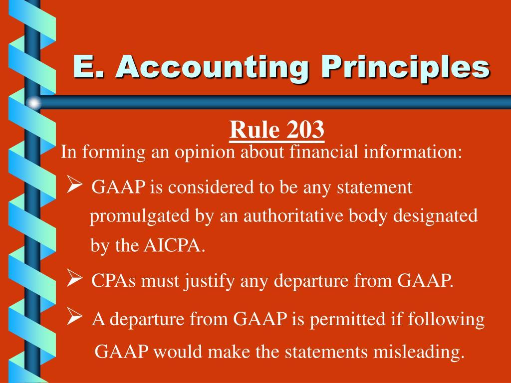 E. Accounting Principles